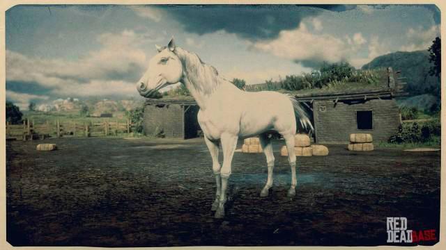 Arabian Horse rdr2