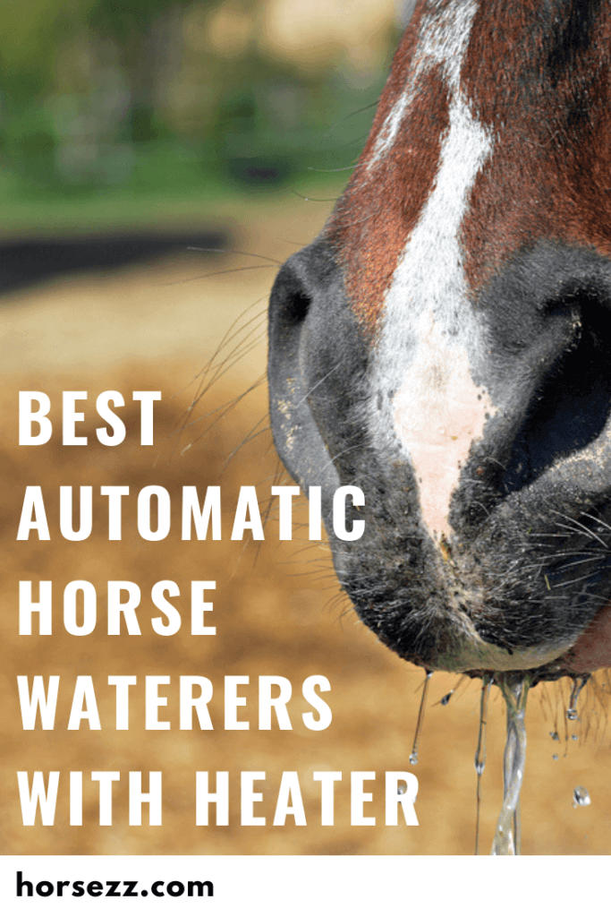 Automatic Horse Waterer with Heater Social