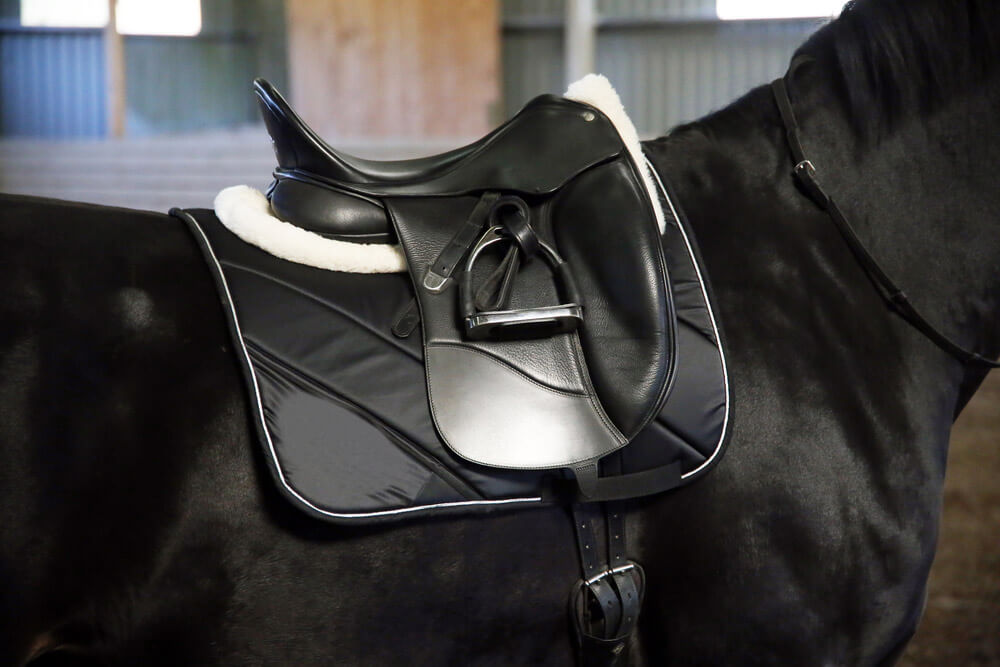 Black leather saddle on a back of a horse