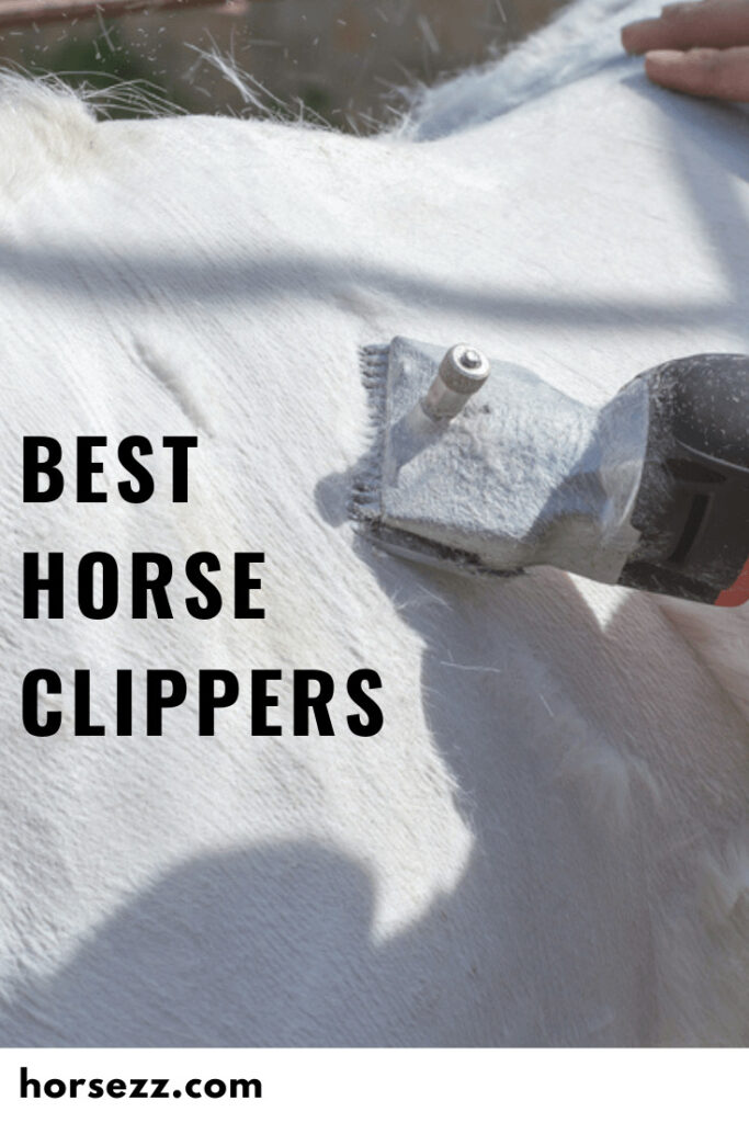 Horse Clippers Social