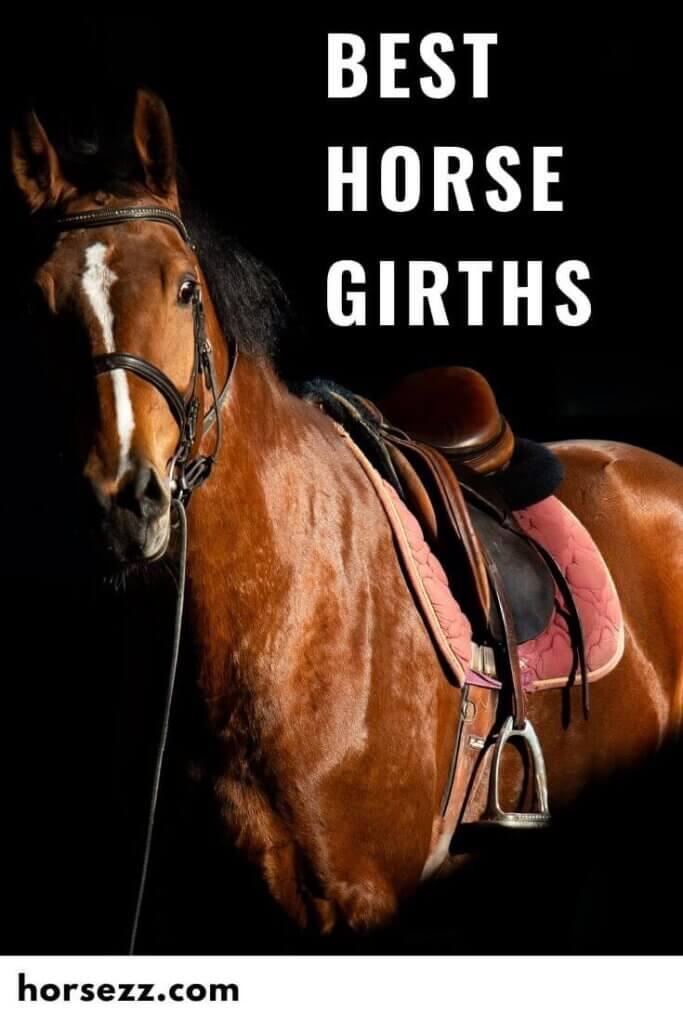 Horse Girths Social Image
