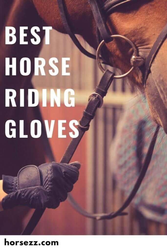 Horse Gloves Social Image