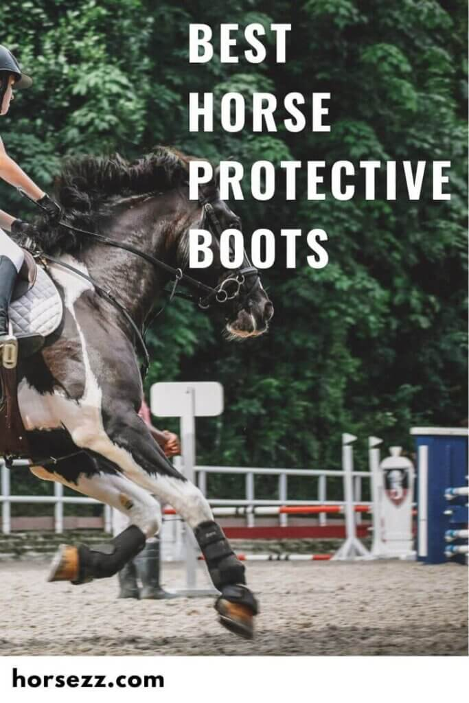 Horse Protective Boots Social Image