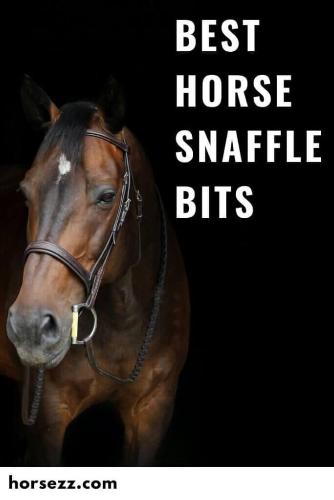 Horse Snaffle Bits Social Image