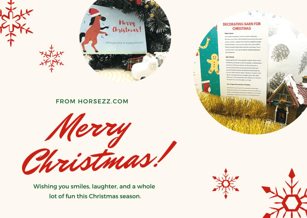 Horsezz Christmas Book Card