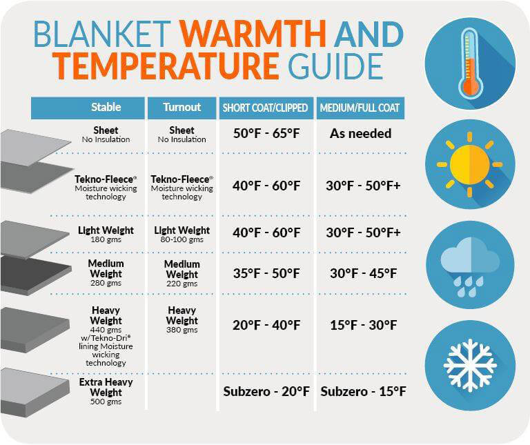 How much blanket warmth your horse needs
