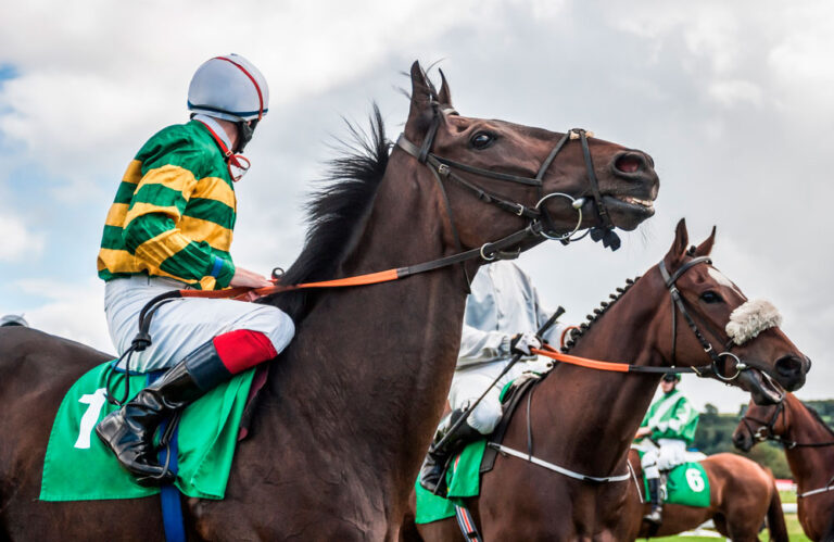 Jockeys and horses before race