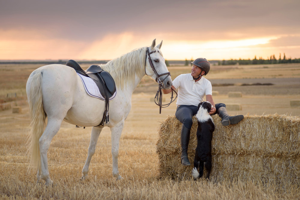 Man with his saddled horse and dog