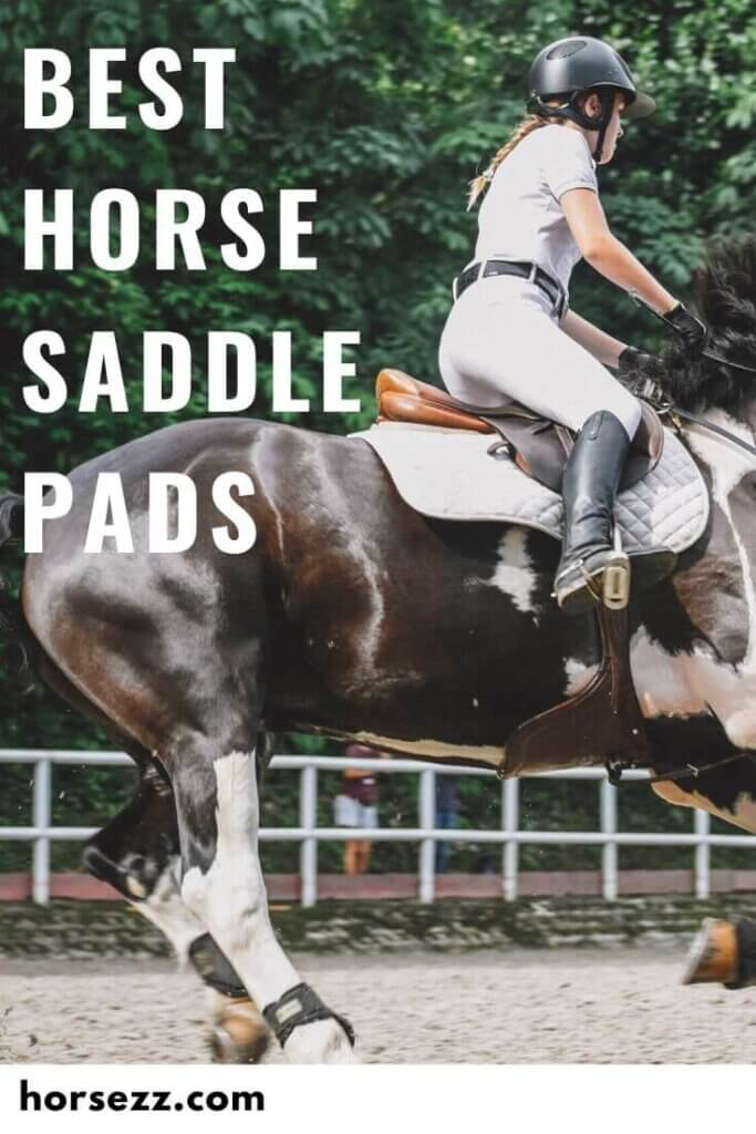 Saddle Pads Social Image