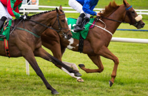 Thoroughbred horses racing