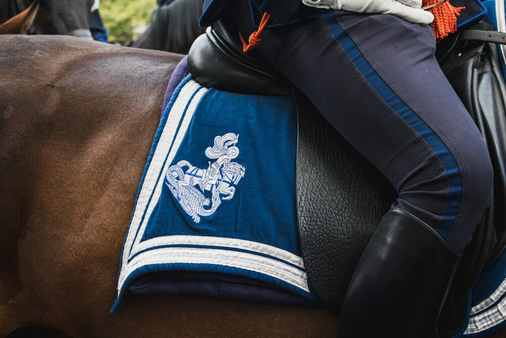 blue horse pad with embroidery