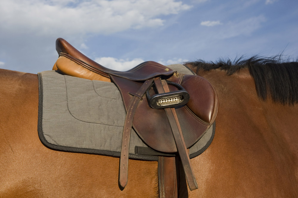 brown leather saddle on horse