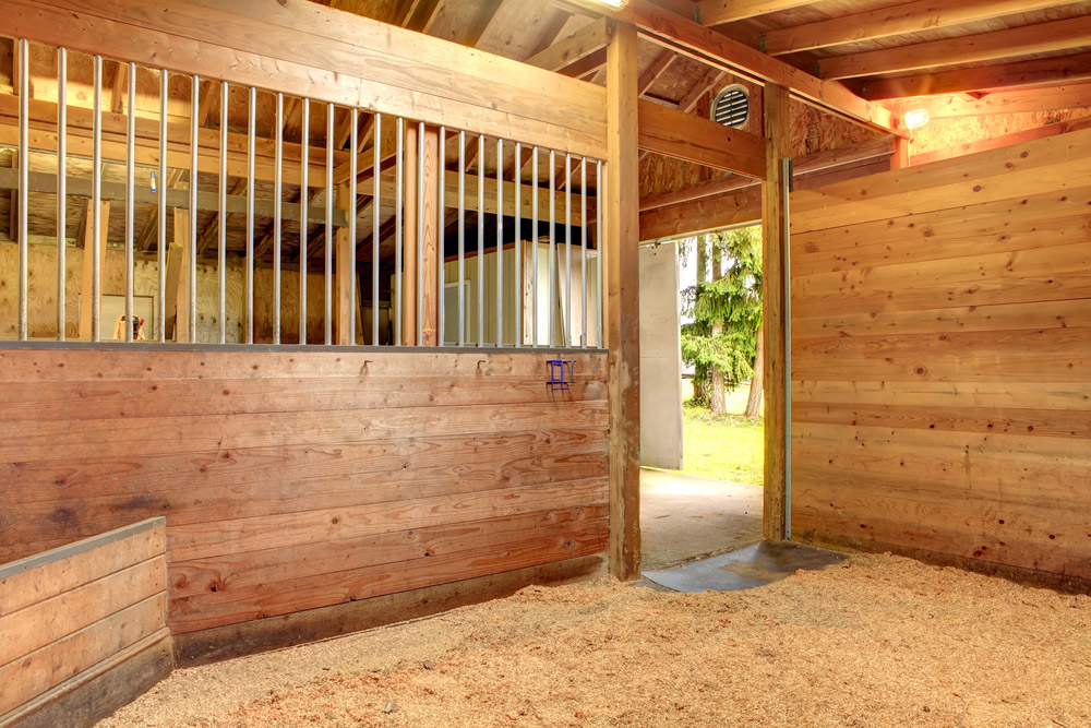 clean wooden horse stable inside view