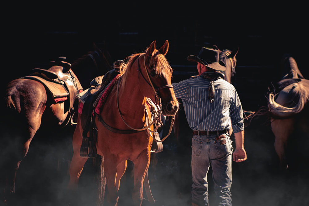 cowboy is checking his horses