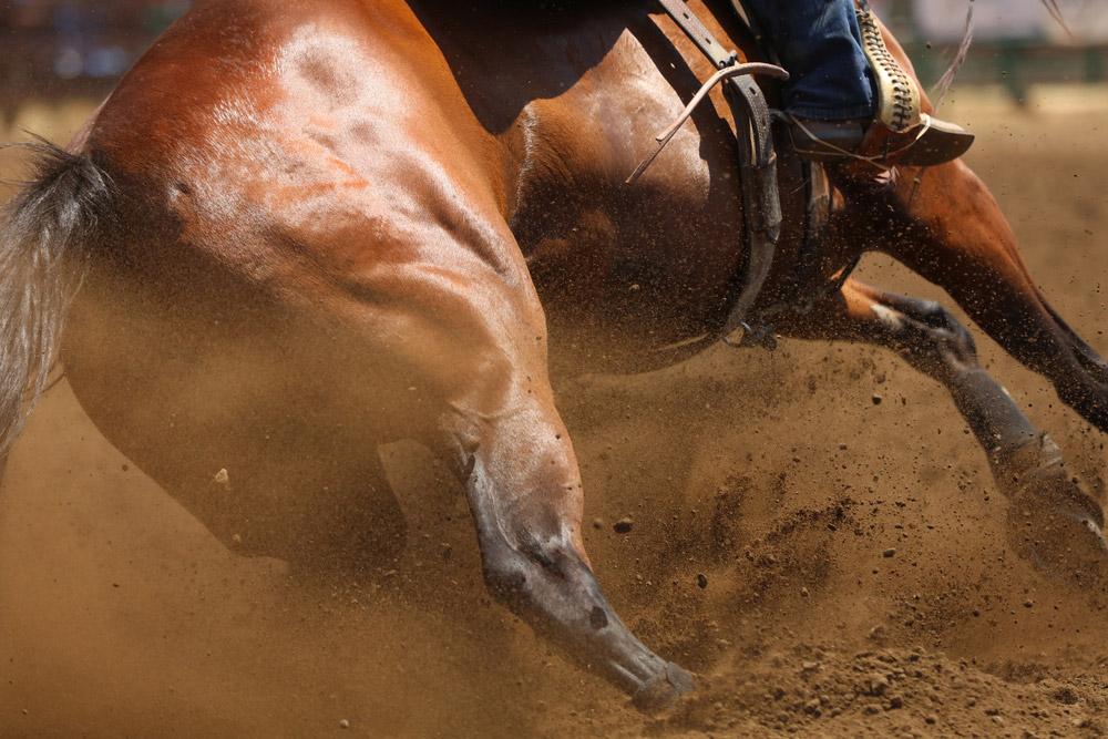 cowboy on horse close up