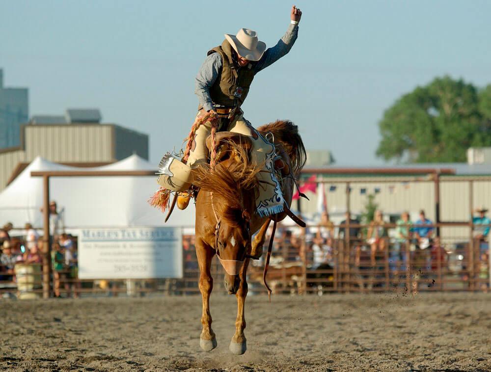 cowboy rodeo show