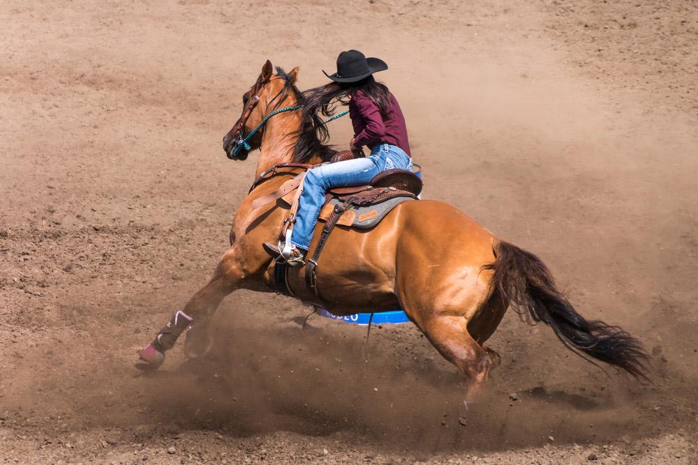 cowgirl performing barrel racing