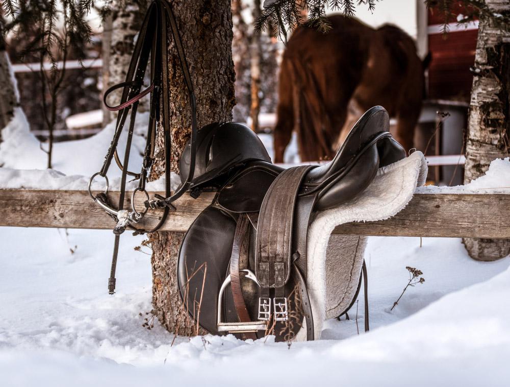 english saddle on wooden fence
