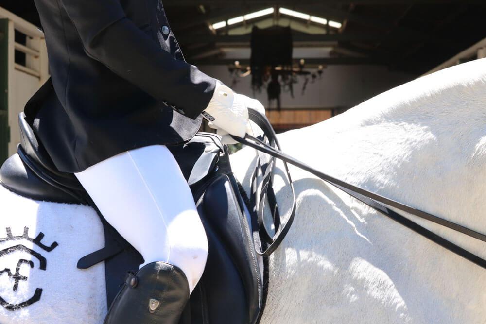 english saddle style image