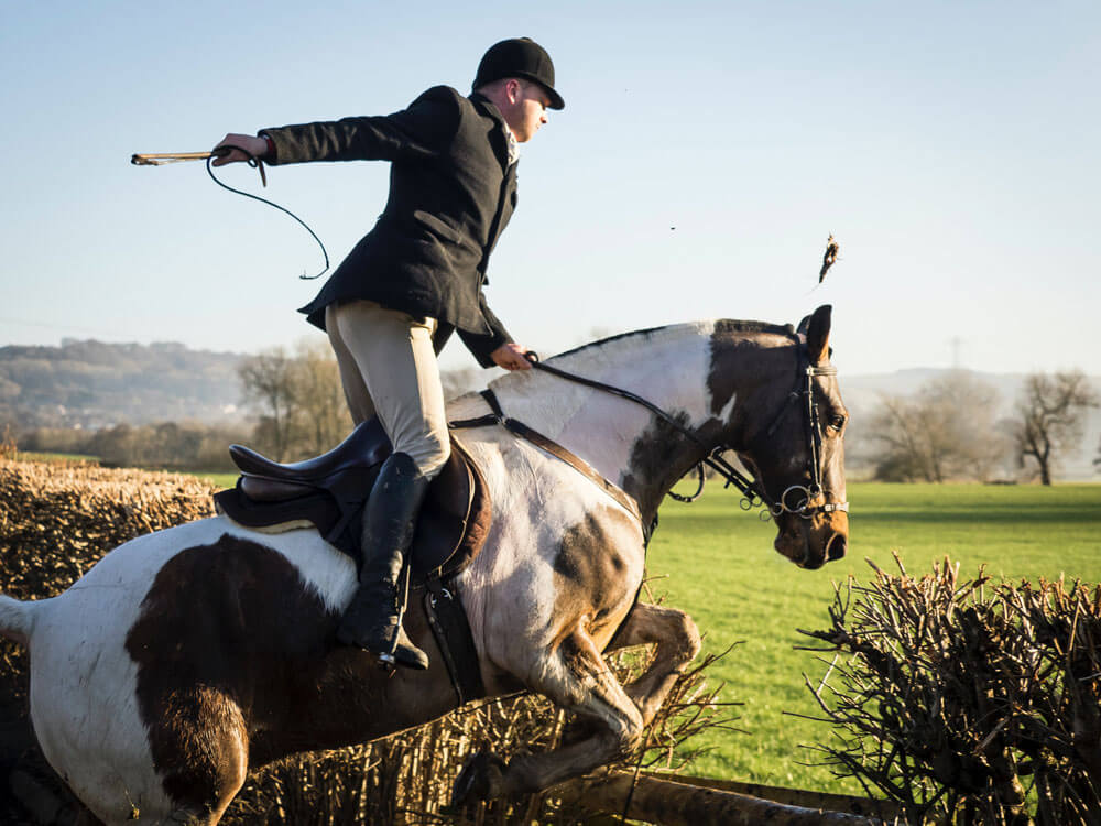 english style horse jumping