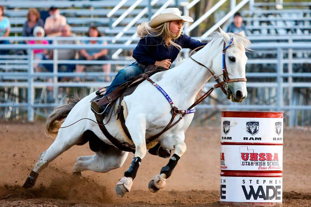 equestrian sport barrel racing