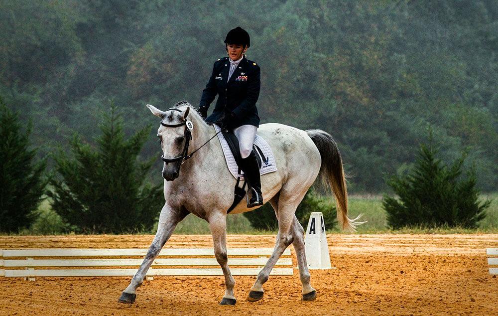 equestrian sport dressage