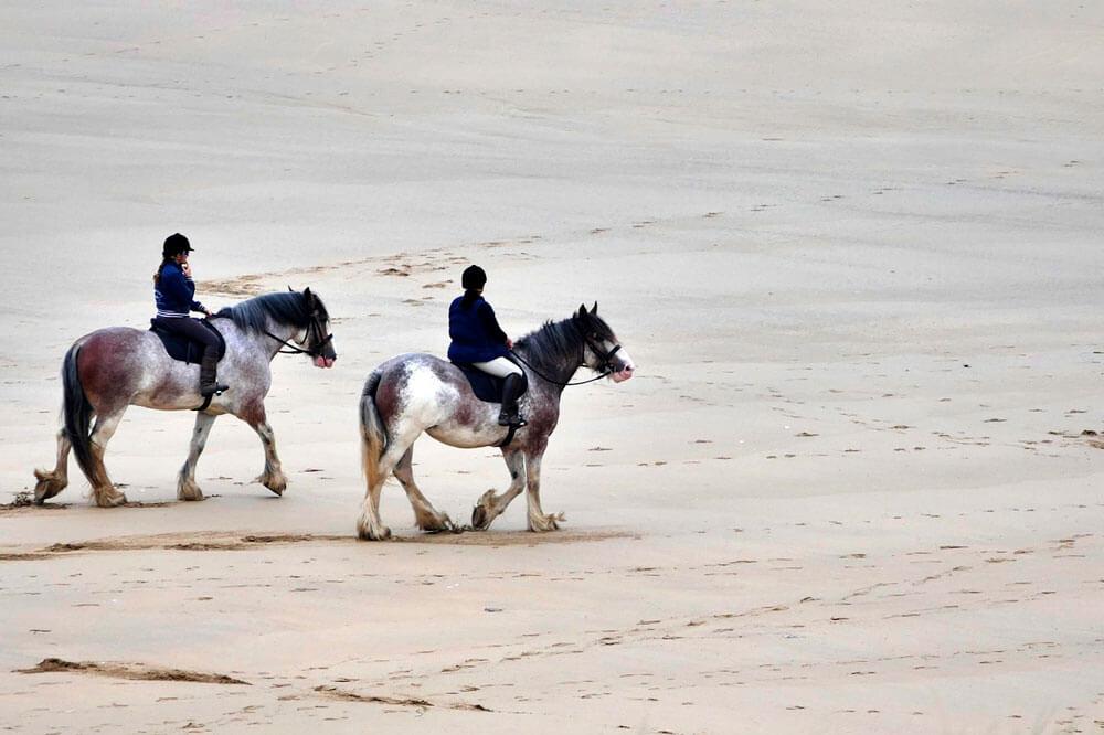 equestrian sport trail riding