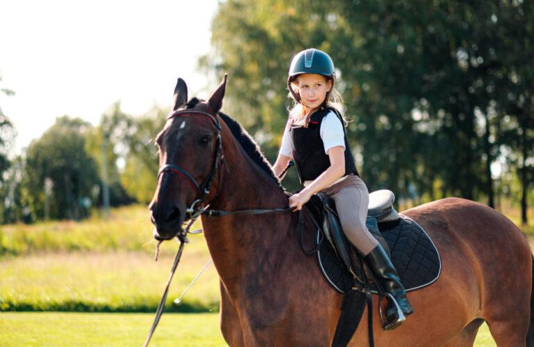 girl posing on bay horse