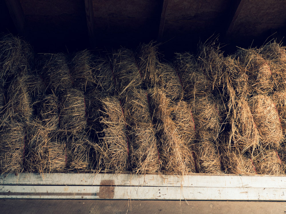 hay is sorted in the barn