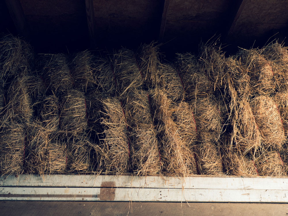 hay is srored in piles