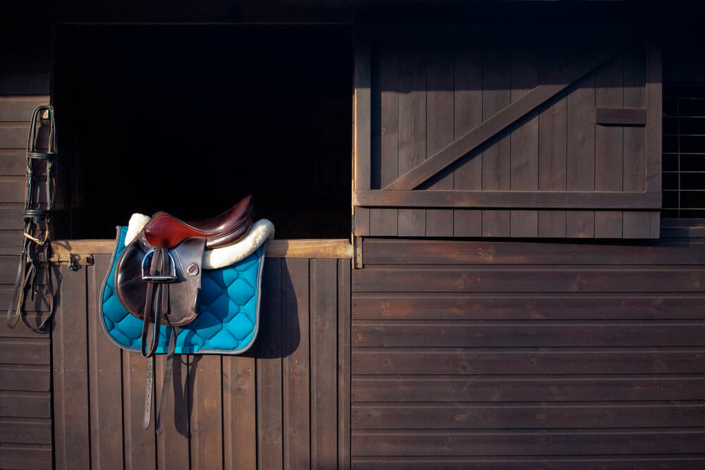 horse bridles saddle and pad are on the stable door