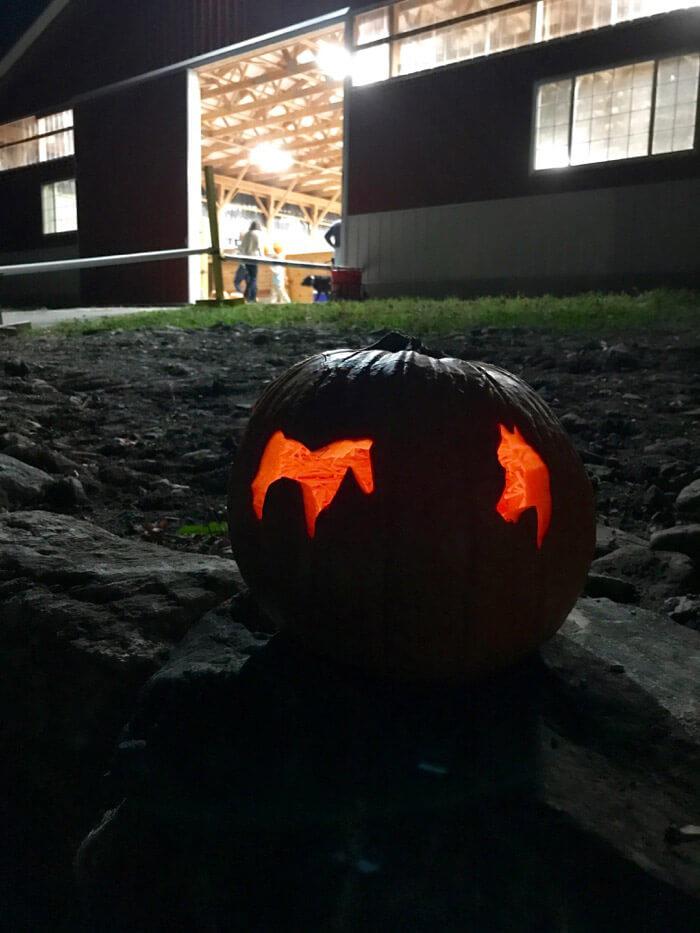 horse cookie cutter pumpkin curving
