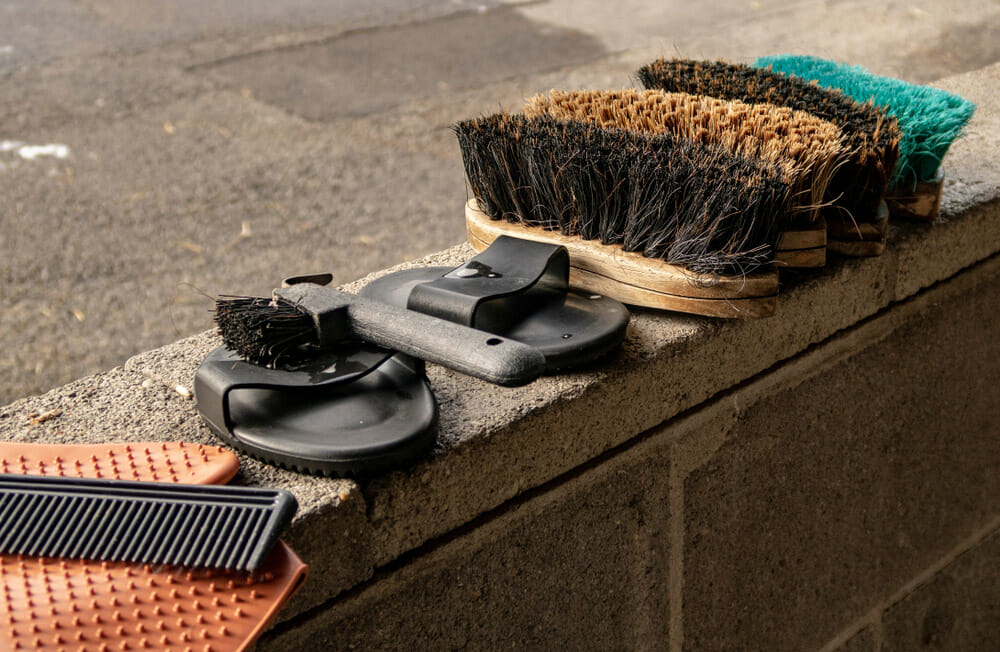 horse grooming brushes and combs