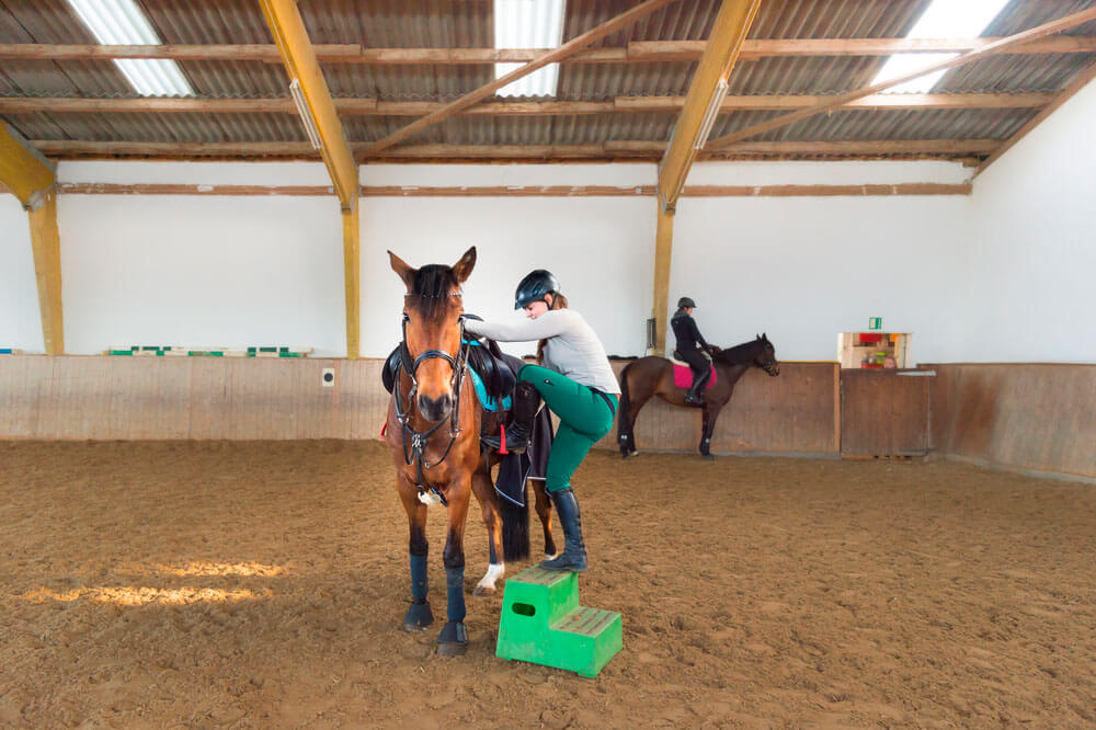 horse mounting with platform
