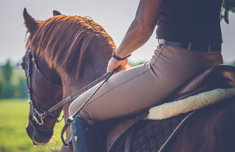 Horse Riding Breeches for Men Review by horsezz.com