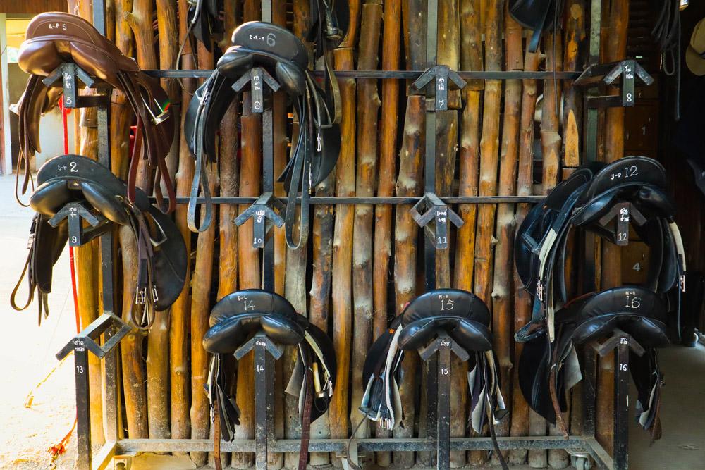horse saddles resting on racks