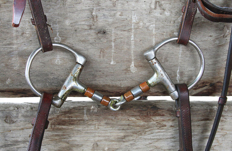 Horse Snaffle Bits Review by horsezz.com