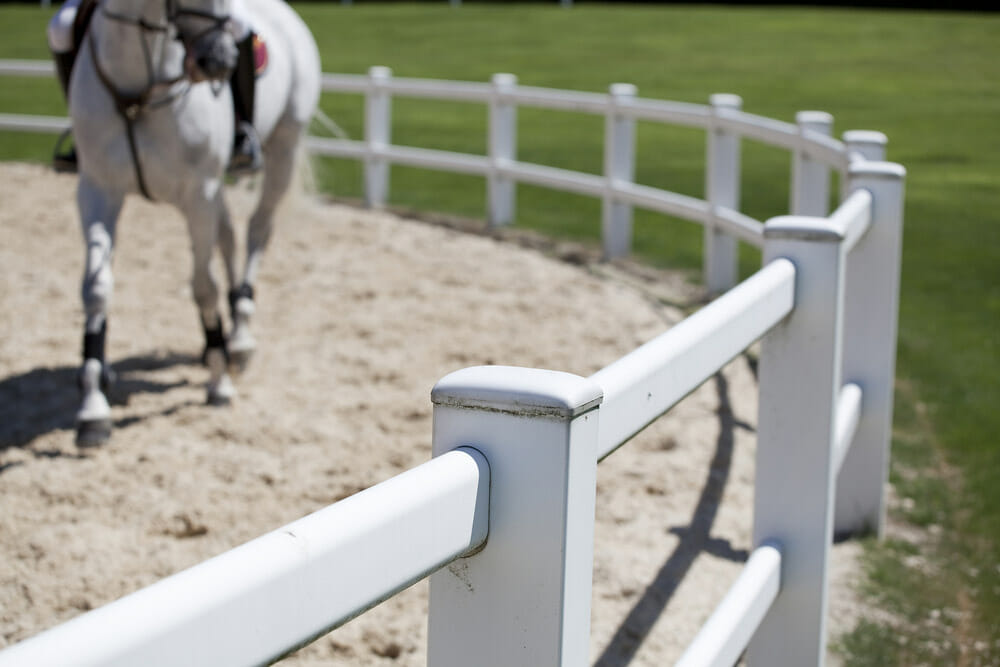 horse training inside white wooden corral