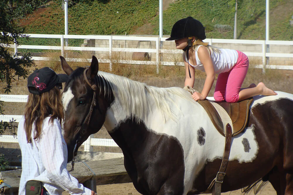 little girl in helmet is on horse