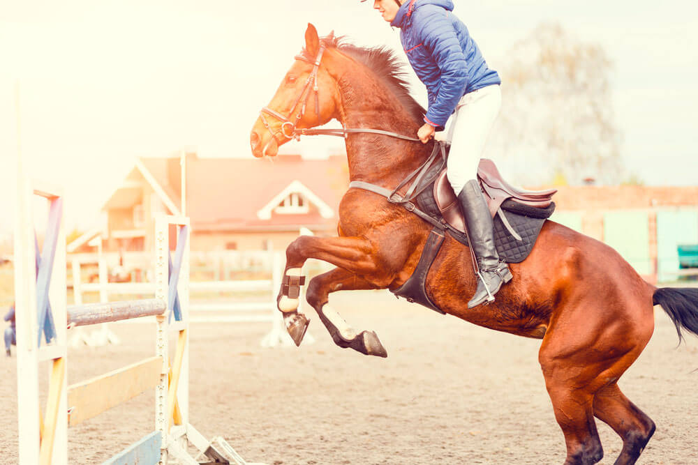 man is jumping on horse