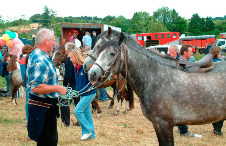 man is selling horses at a horse fair