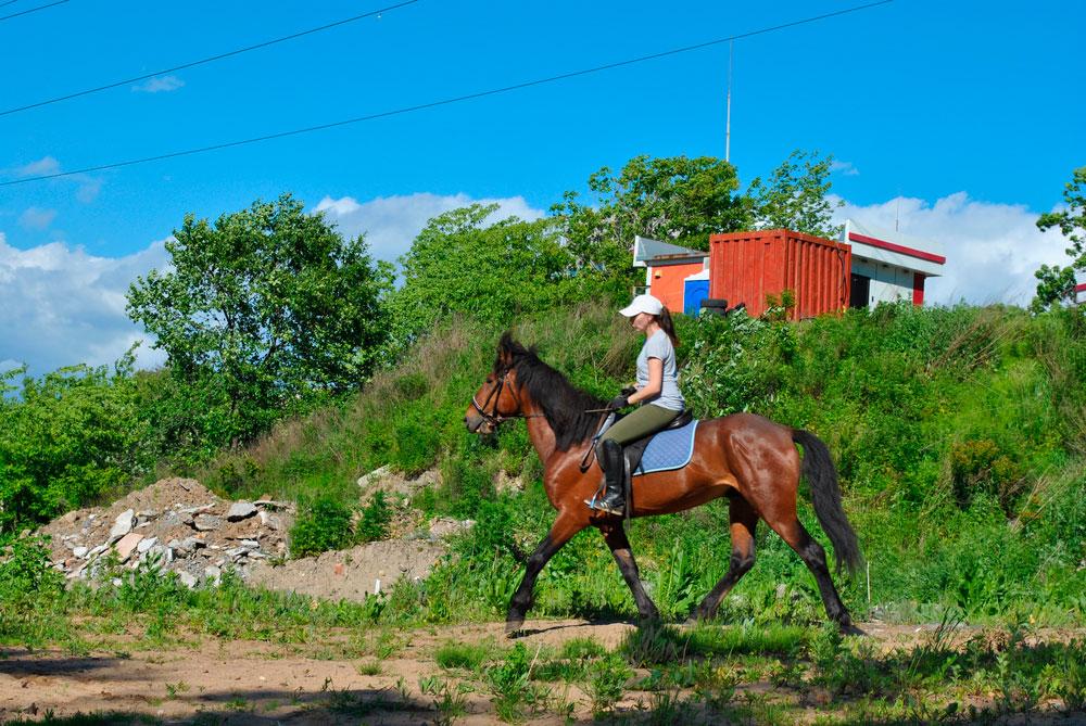 pregnant woman riding horse