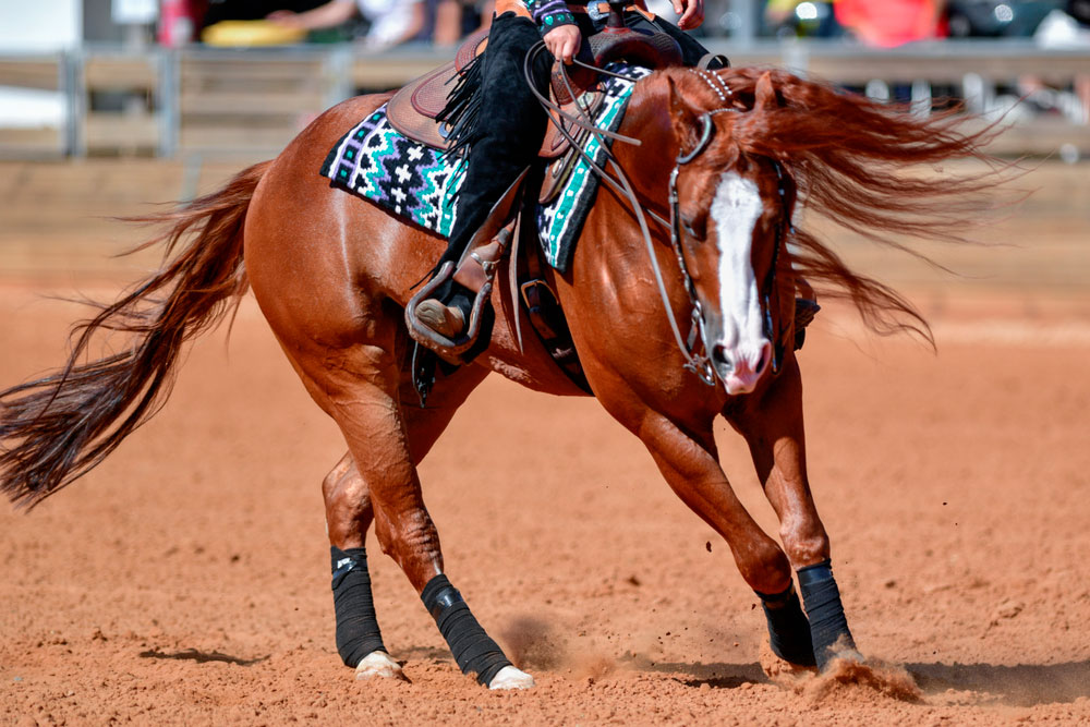 side view of a rider in jeans