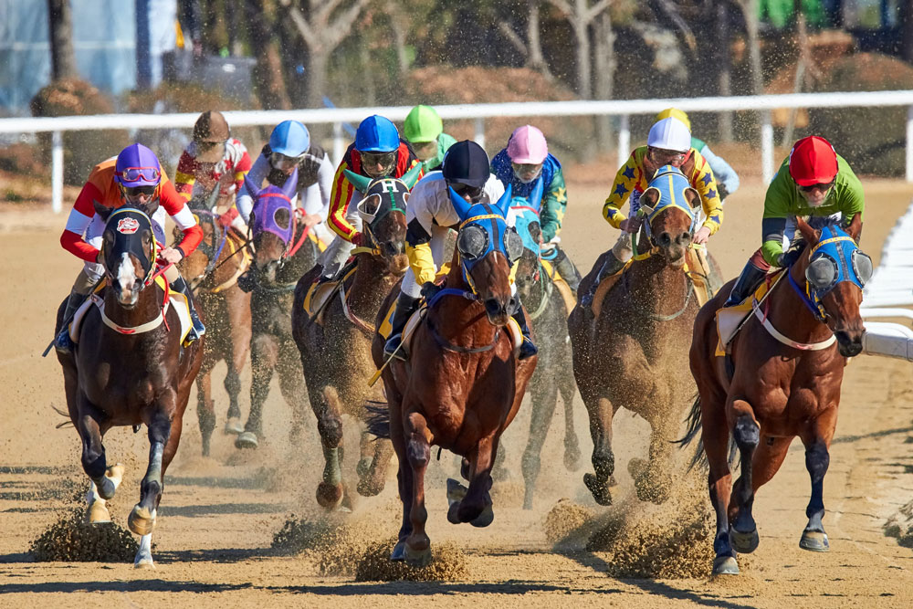 sportsmen are taking part in horserace