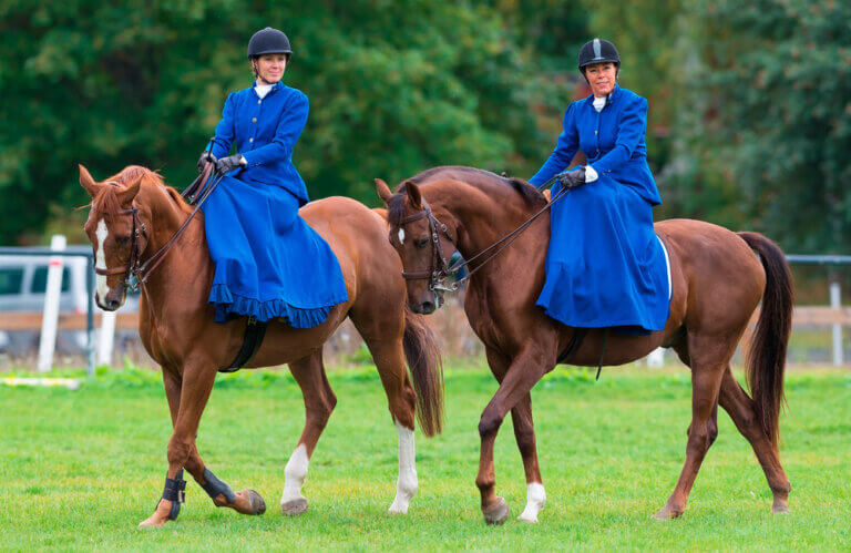 two women in blue dresses are riding side saddle