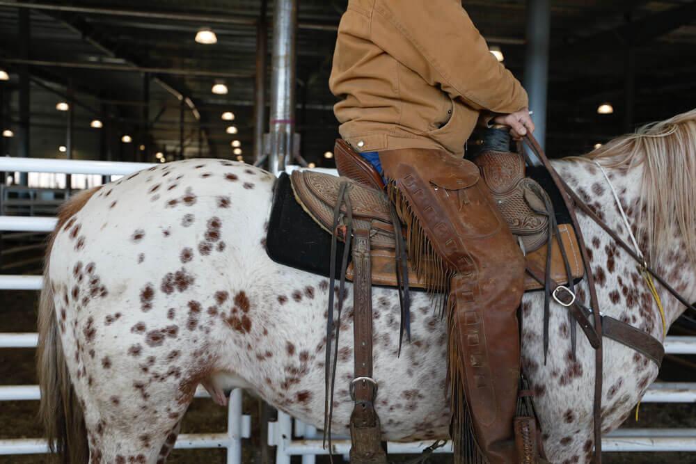 western saddle style image