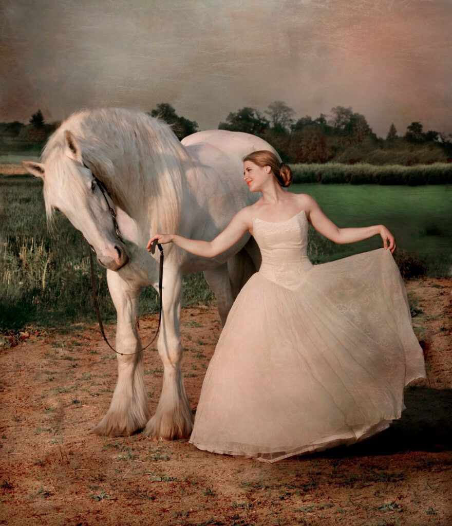 woman holding white Shire Horse