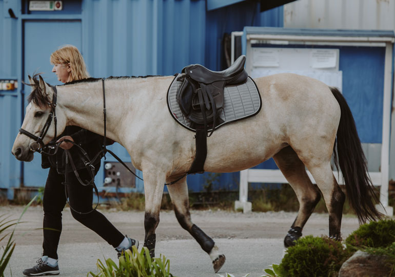 woman is leasing a horse with black English saddle