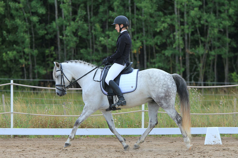woman is performing dressage with braided horse