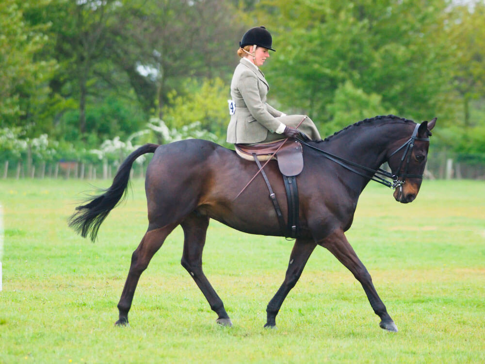 woman is sidesaddle riding a bay horse
